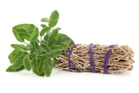 Native American Medicinal Cures