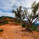 Trips of Transformation: Visiting the Sedona Vortexes