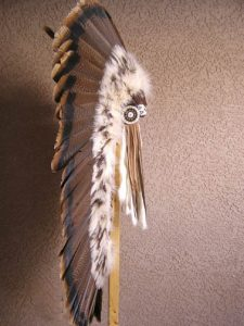 Native American Long Feathered Headdress